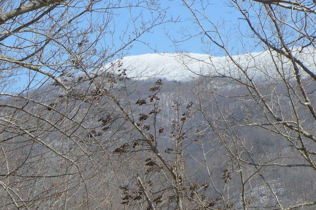Tennessee Appalachian Mountains